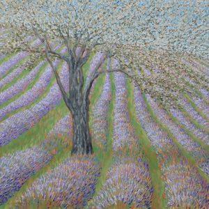 Lavender Hillside 32 x 32 oil on linen