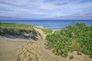"""""""Moshup Morning Dune"""" by Marjorie Mason"""