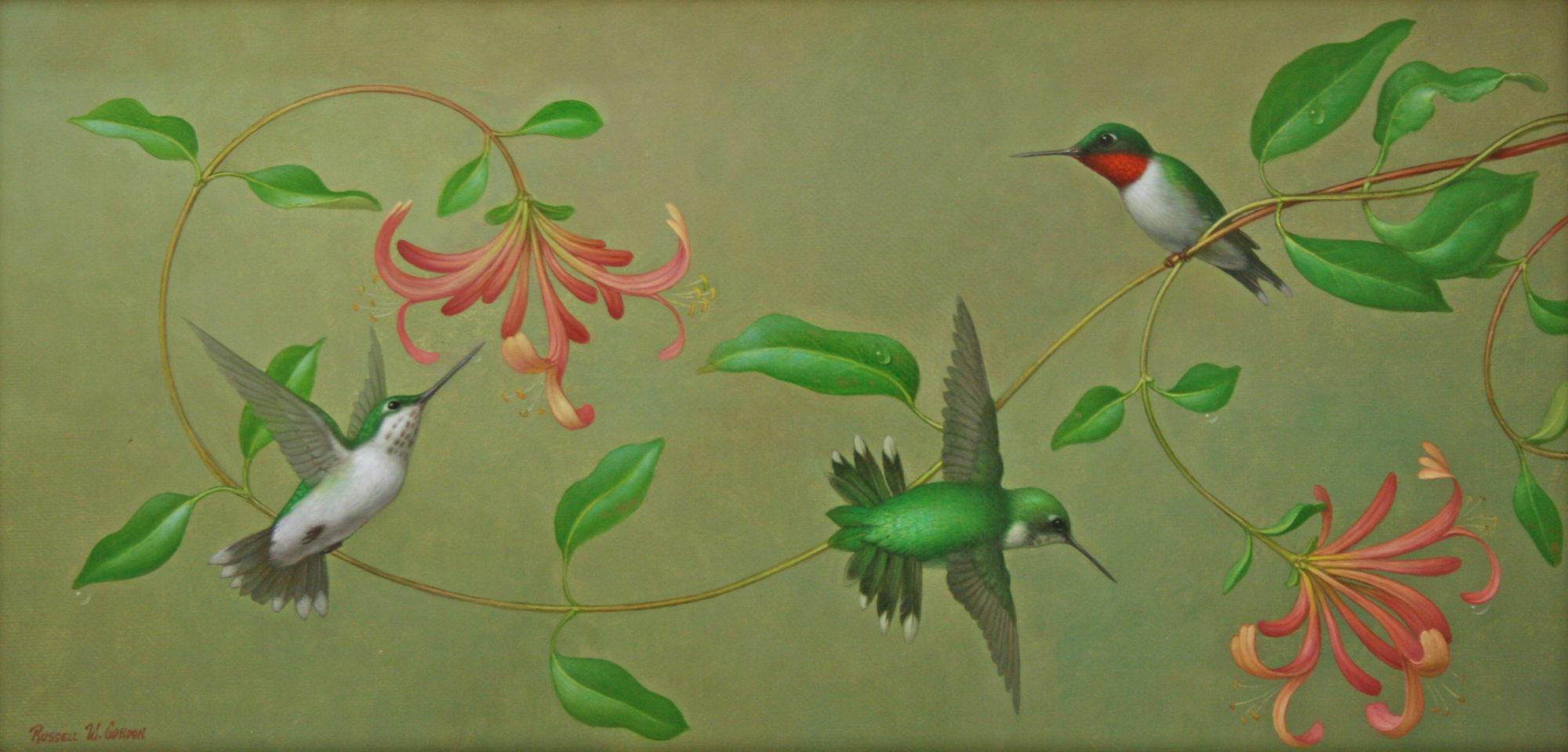 Hummingbirds in Honeysuckle
