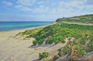 Menemsha Morning Rose Dune by Marjorie Mason